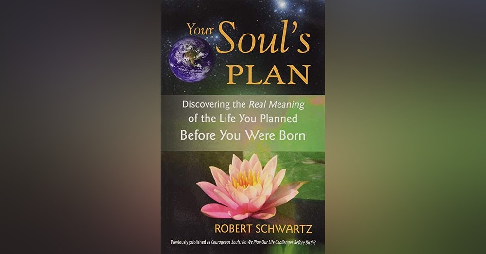 Kevin McDonald Presents- Rob Schwartz Author