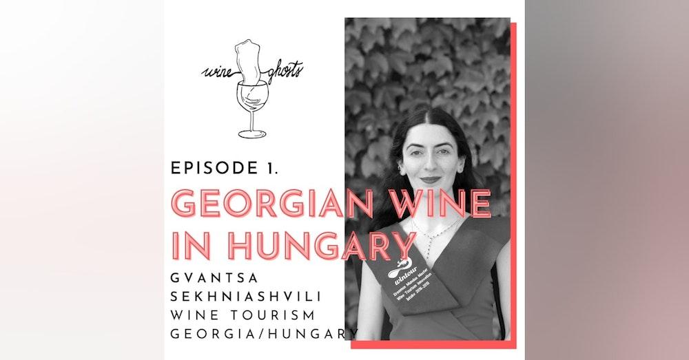 Ep 1. / Gvantsa Sekhniashvili's way around Georgian & Hungarian Wines