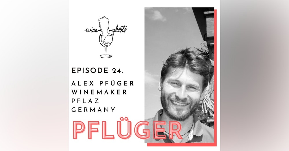 Ep. 24. / Alex Pflüger tells you how great biodynamic Pfalz wines are done