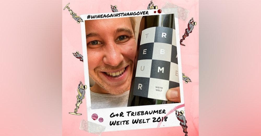 WAH #4 | Günter + Regina Triebaumer Weite Welt 2018 | Burgenland, Austria