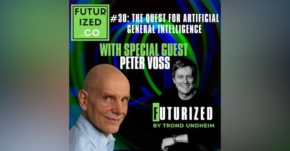 The Quest for Artificial General Intelligence