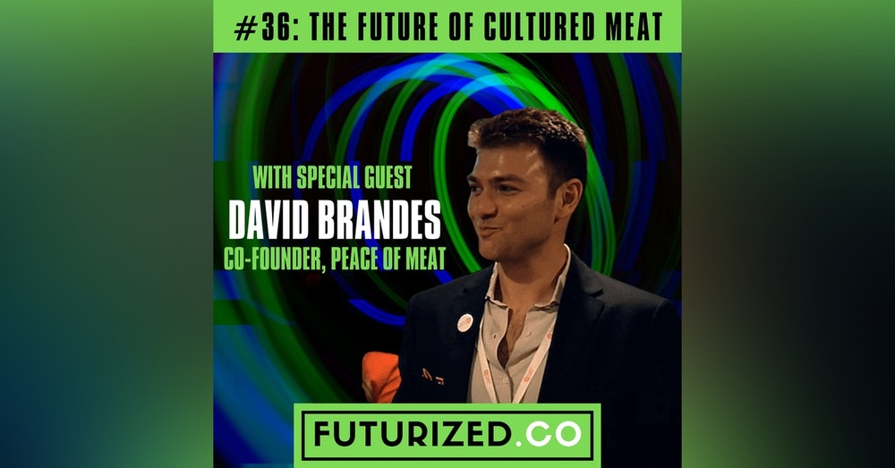 The Future of Cultured Meat