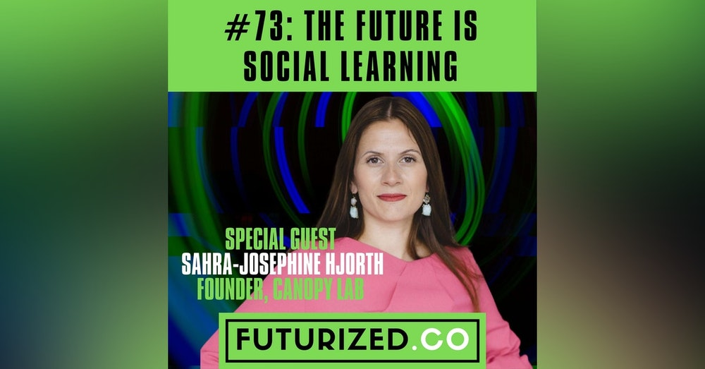 The Future of Social Learning