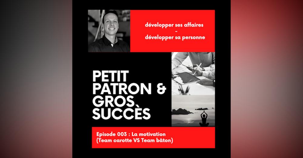 La motivation (Team Carotte ou Bâton ?)   E003 PPGS