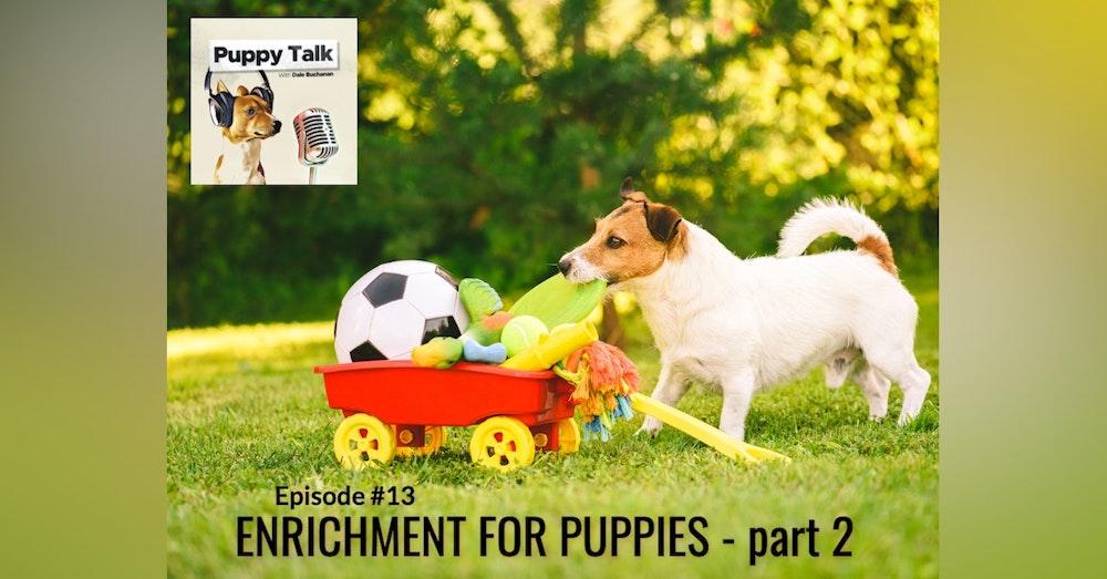 Enrichment for Puppies Part 2