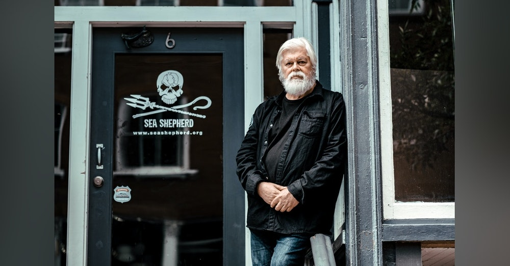 A Good Day To Die: Sea Shepherd Founder Captain Paul Watson On The Compassion Behind Confrontation