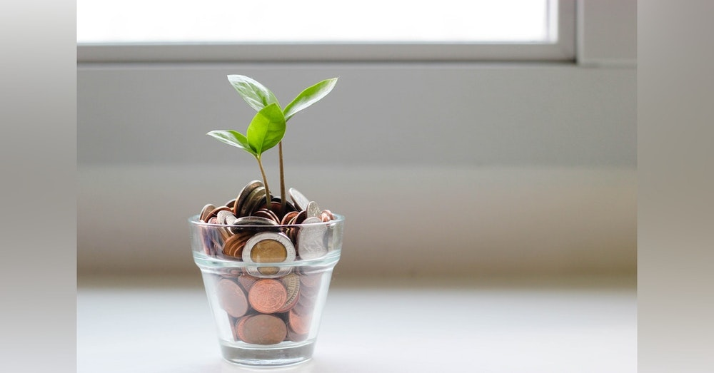 #8 L'Optimisation fiscale