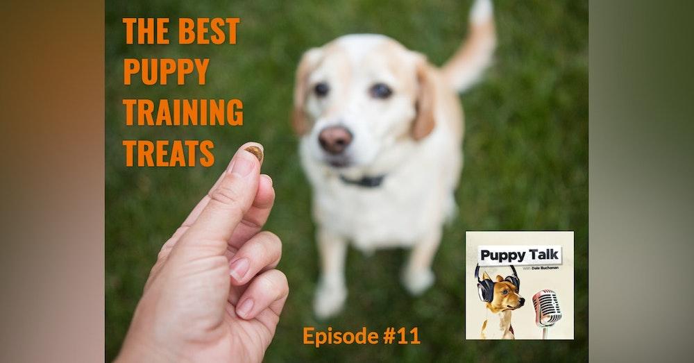 The Best Puppy Training Treats