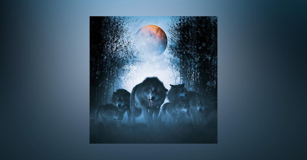 56: I Plead Moon Madness