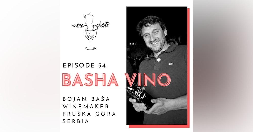 Ep. 54. / Basha Vino Bottles the Serbian Terroir in Amber Colors
