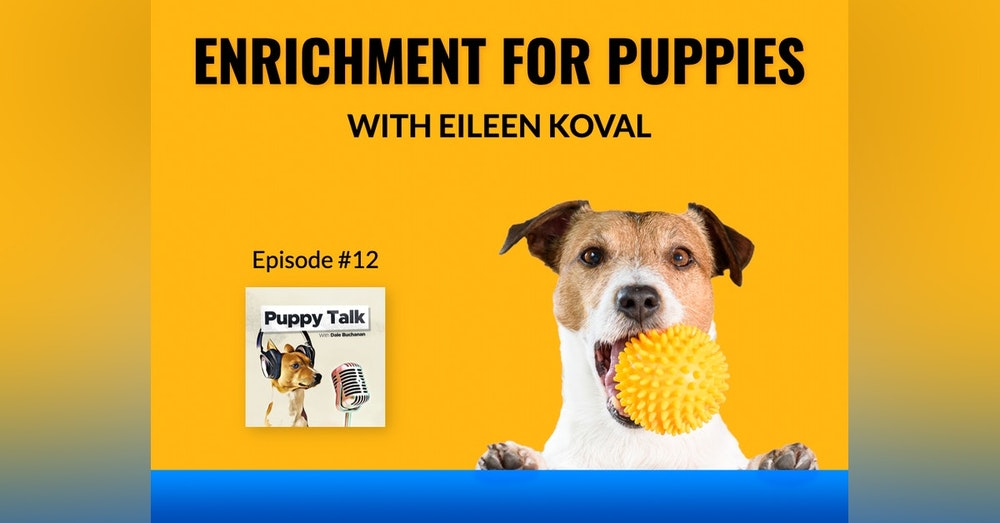 Enrichment For Puppies with Eileen Koval