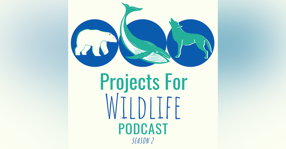 Episode 005 - Eric Angel Ramos shares how flying drones in Belize is protecting manatees!