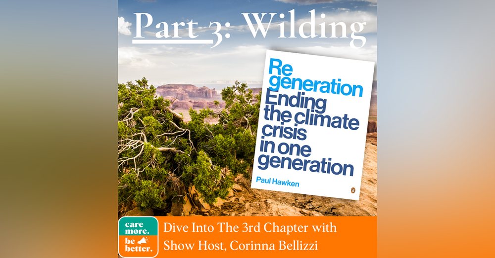 Regeneration Part 3: Wild Things and Wilding, A Review of Paul Hawken's Book on Ending The Climate Crisis in One Generation