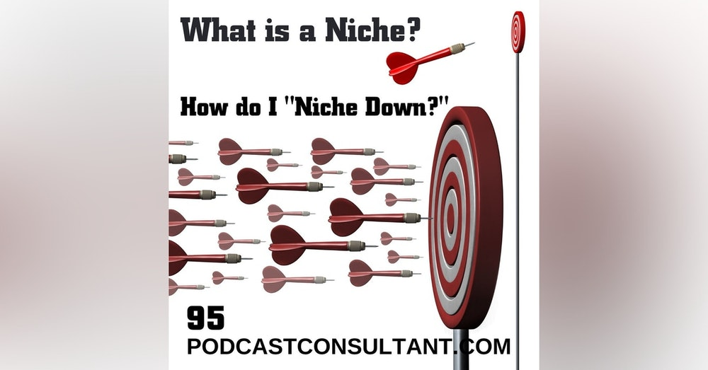 What is a Niche? How Do I Niche Down?