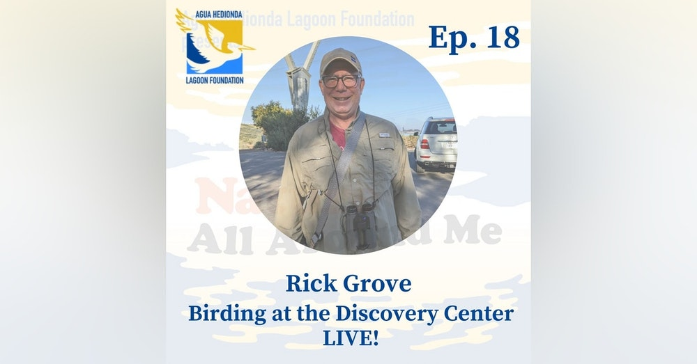 Ep. 18 Birding at the Discovery Center - LIVE