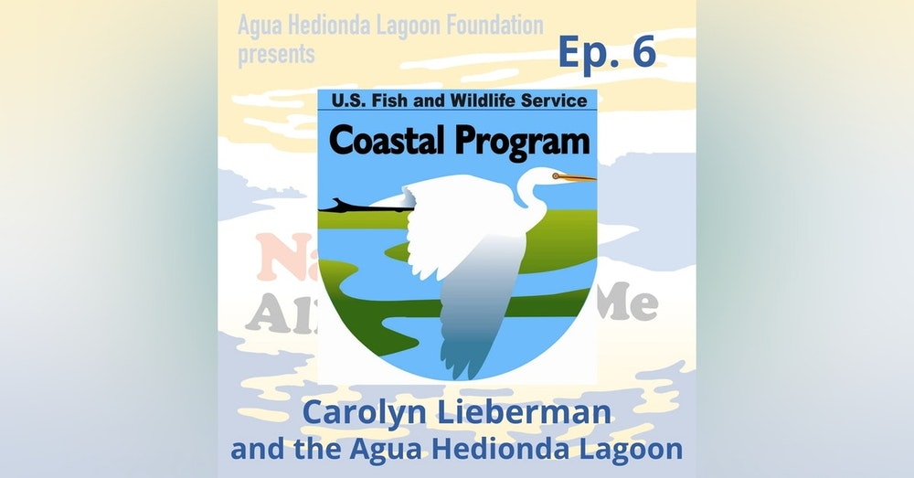 Ep. 6 Carolyn Lieberman: US Fish & Wildlife and the Agua Hedionda Lagoon