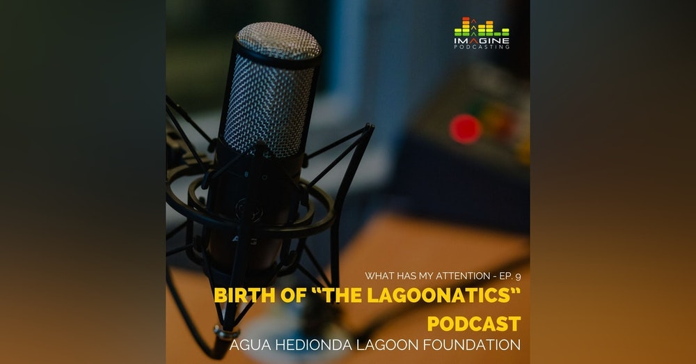 "Ep. 9 Birth of ""The Lagoonatics"" podcast"