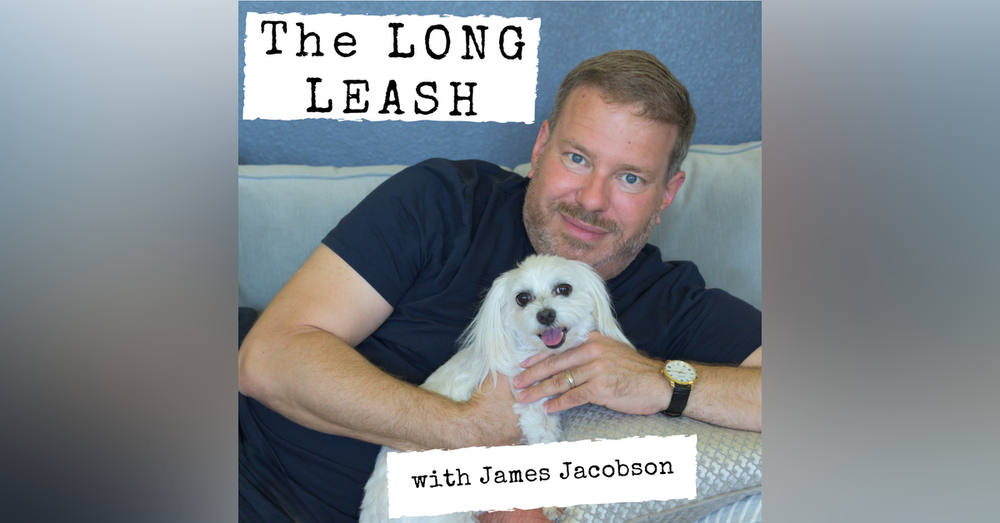 Dogs sell tacos and trucks. Can they sell a President? | The Long Leash