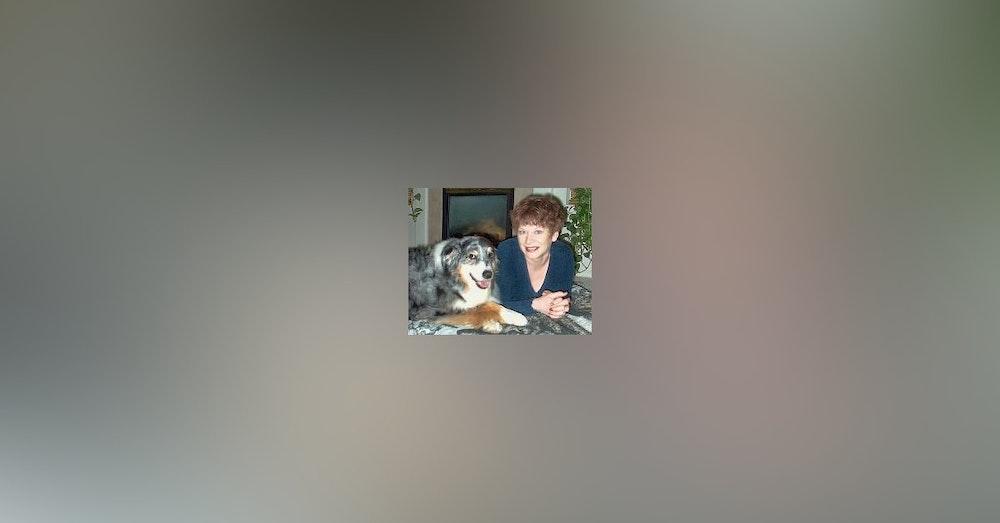 Working Description and Author Devin O'Branagan