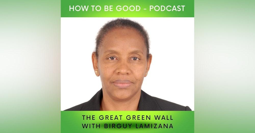 The Great Green Wall: we talk to Birguy Lamizana