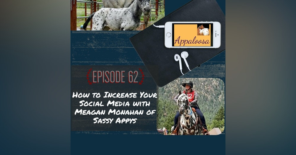 How to Increase Your Social Media with Meagan Monahan of Sassy Appys