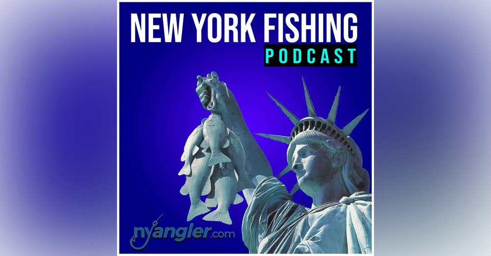 New York Anglers Looking at a saltwater fishing license.