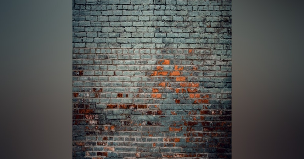 #245 Don't worry about the wall, just find the next brick