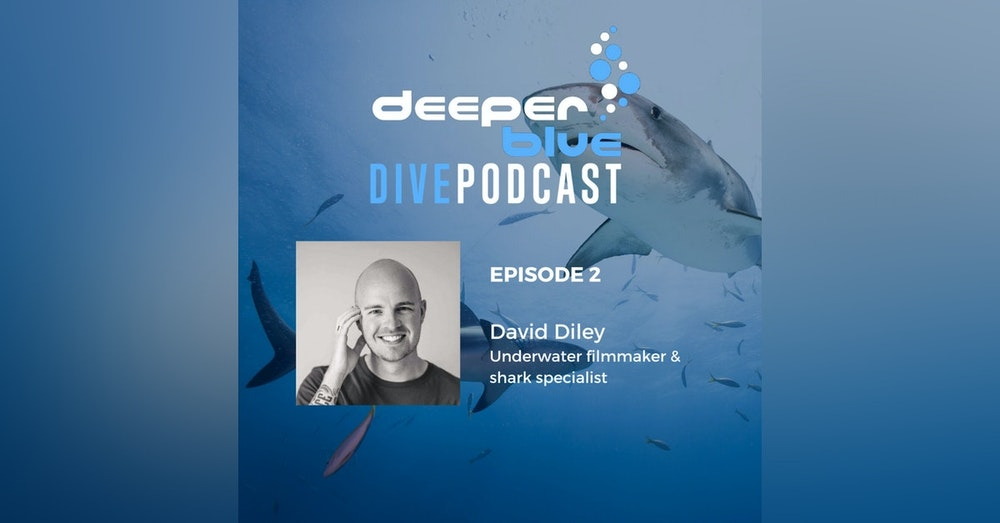 The Day Diving Stood Still, and Underwater Cameraman David Diley