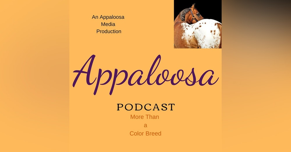EP16 - Destiny Zeiders of the Appaloosa Game Horse Association
