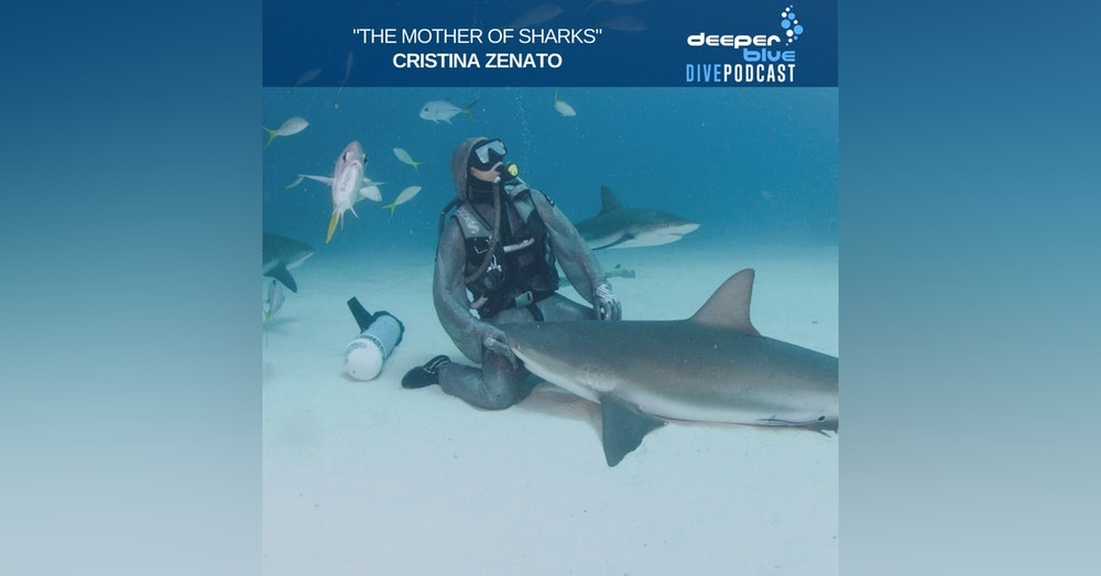 """Cristina Zenato the """"Mother of Sharks"""" on the trust she places in her children, and Jennifer Idol on how the best underwater camera might just be in your pocket"""