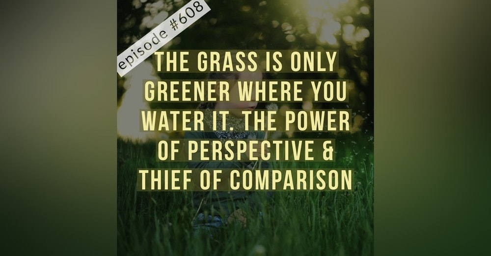 608.The grass is only greener where you water it. The power of perspective & thief of comparison.