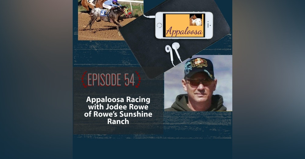 Appaloosa Racing with Jodee Rowe of Rowe's Sunshine Ranch