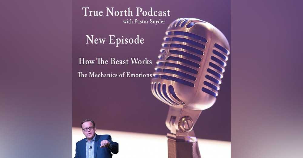 Ep. 25 How The Beast Works (The Mechanics of Emotions)