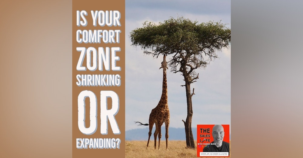 632. Your comfort zone never stays the same. It's either shrinking or expanding.