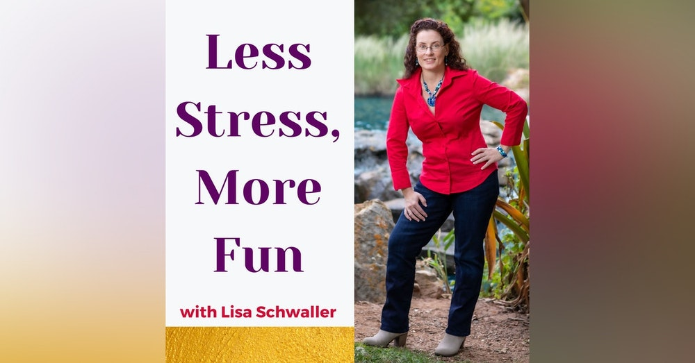 """Welcome to """"Less Stress, More Fun""""!"""