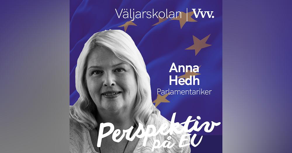 11. [Valspecial] Om hur EU-parlamentet funkar i praktiken - med parlamentariker Anna Hedh[