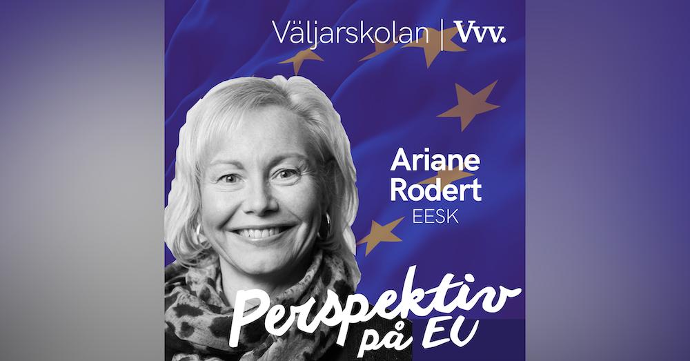 17. [Valspecial] Om hur EU-kommissionen tar in synpunker inför nya lagförslag - med Ariane Rodert