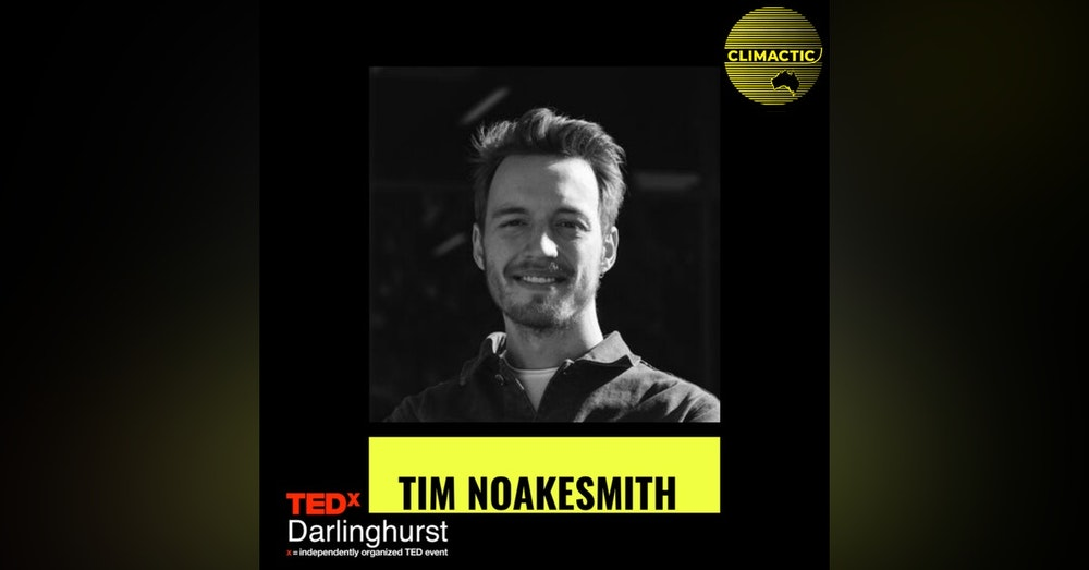 Tim Noakesmith | Why eating Tortoise could save the planet