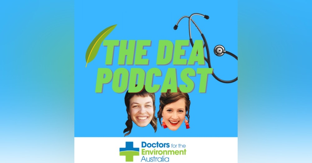 Medical education and more with Georgia Behrens