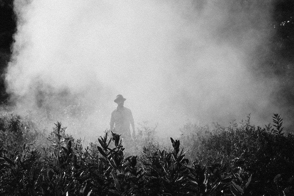 The Haunted Myrtles Plantation