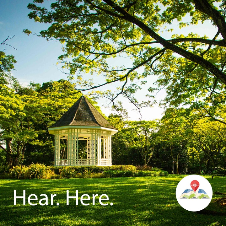 259569 Palm Valley Singapore Botanic Gardens