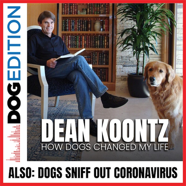 Dean Koontz: How Dogs Changed My Life | Dogs Sniff Out Coronavirus | Dog Edition #22