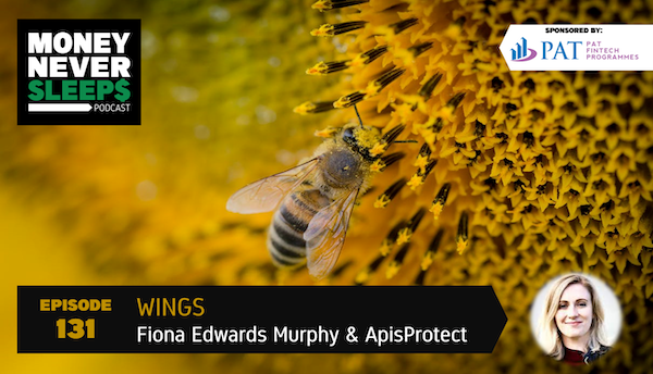 131: Wings | Fiona Edwards Murphy and ApisProtect Image