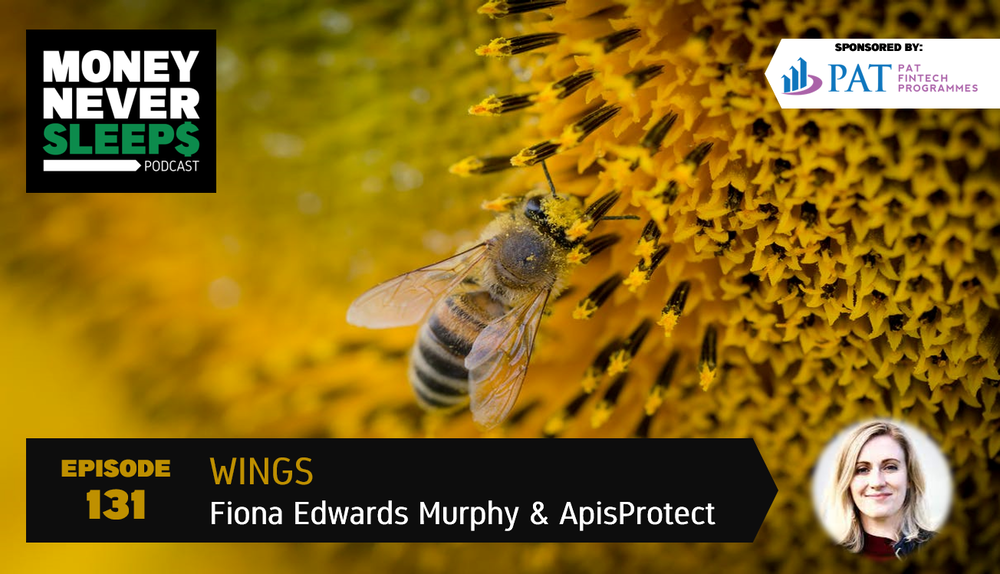131: Wings | Fiona Edwards Murphy and ApisProtect