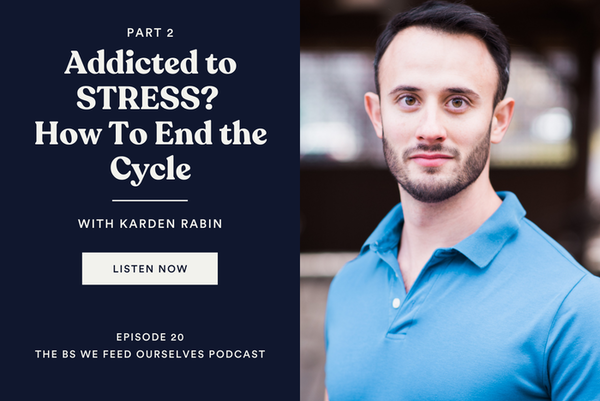 20. Addicted to STRESS? (How To End the Cycle) Part 2 Image