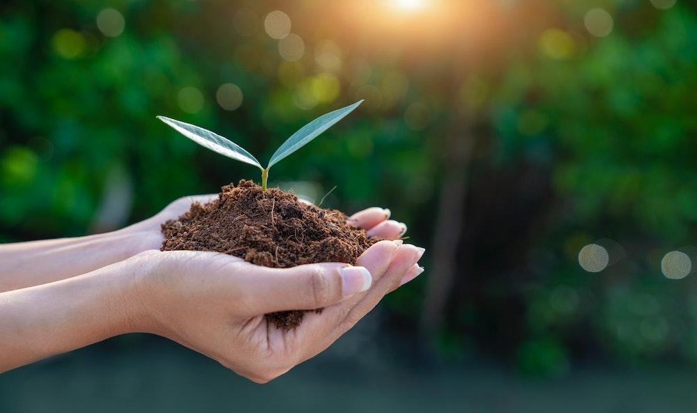 BBVA se suma a la alianza bancaria de cero emisiones netas promovida por Naciones Unidas