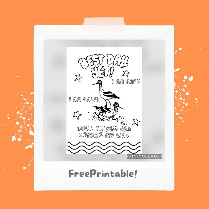 FREE Printable Emergency Calm Coloring Page