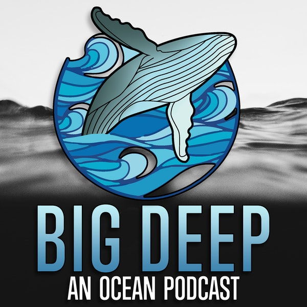 An Ocean of Stories: Welcome to the Big Deep Podcast!