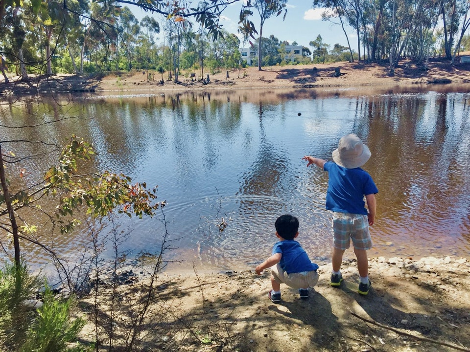 7 Lakes and Ponds to Visit in San Diego