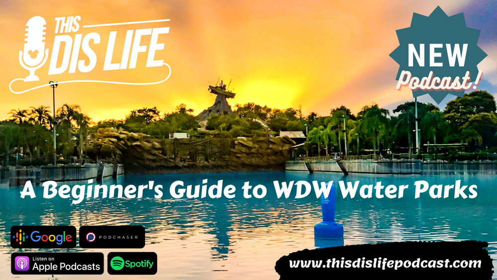 A Beginners Guide to WDW Water Parks